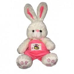 Conejo con enterito