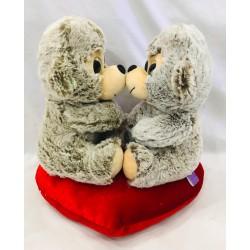 pareja mono enamorados